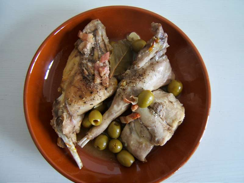 Spanisches Kaninchen