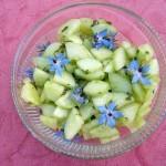 Gurkensalat mit Boretsch (Gurkensalat mit Borretsch)